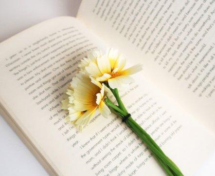 Что почитать в мае. 9 книжных новинок для майских праздников
