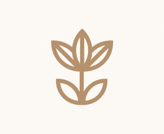 Ужи и краснокнижные растения. Около зоопарка открывают экотропу